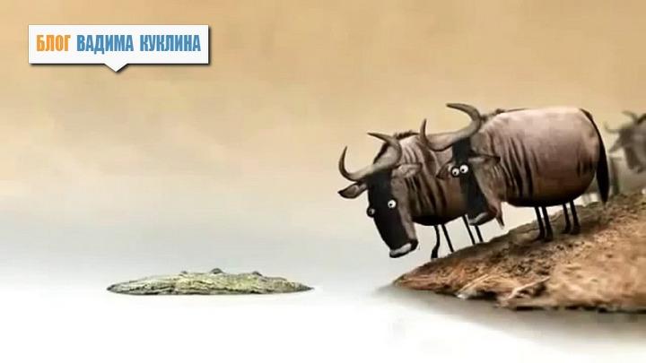 Залоги на торгах по банкротству